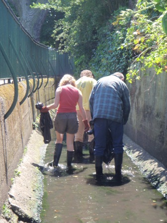 Removing litter from the Norbury Brook through Thornton Heath Recreation Ground