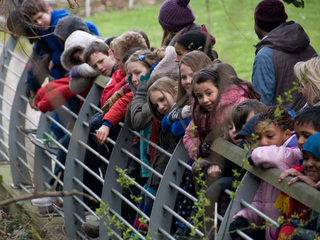 Children on bank