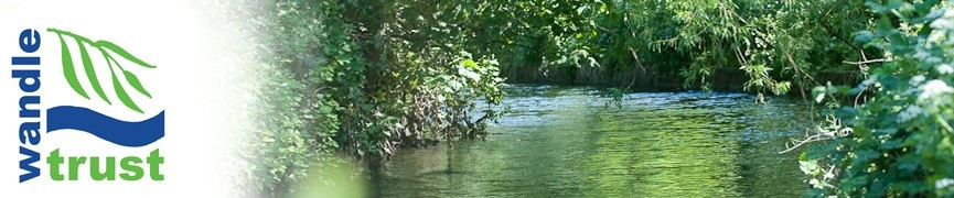 The Wandle Trust