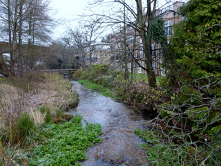 Upper Wandle - winter landscape
