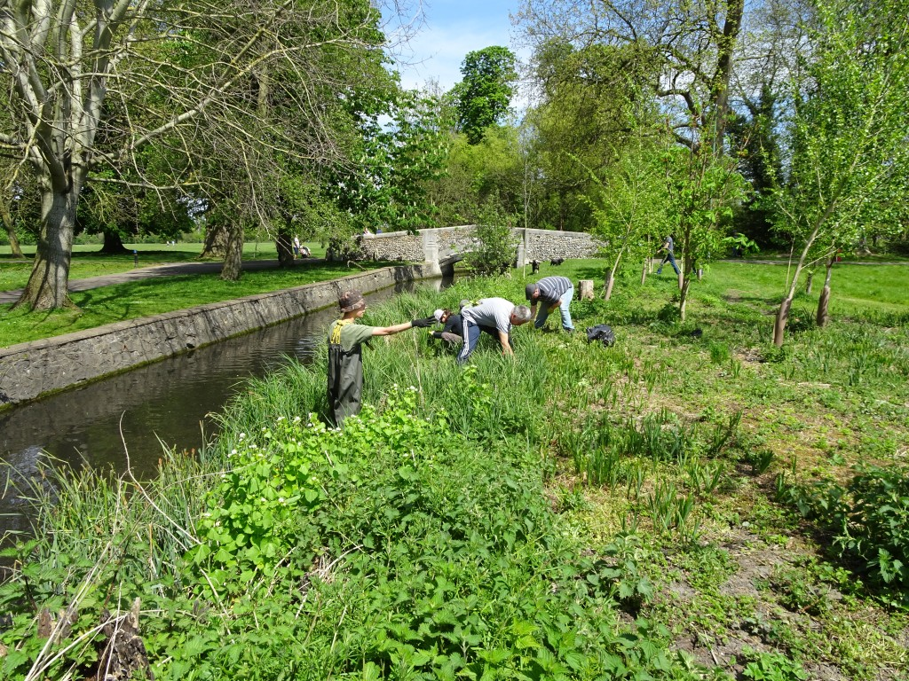 Beedington Park Clean up and HB bash 8 May 2016 (27)