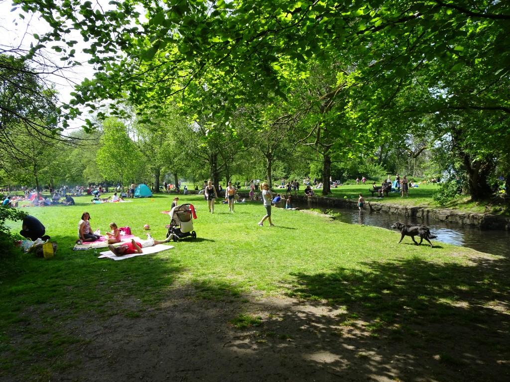 Beedington Park Clean up and HB bash 8 May 2016 (50)