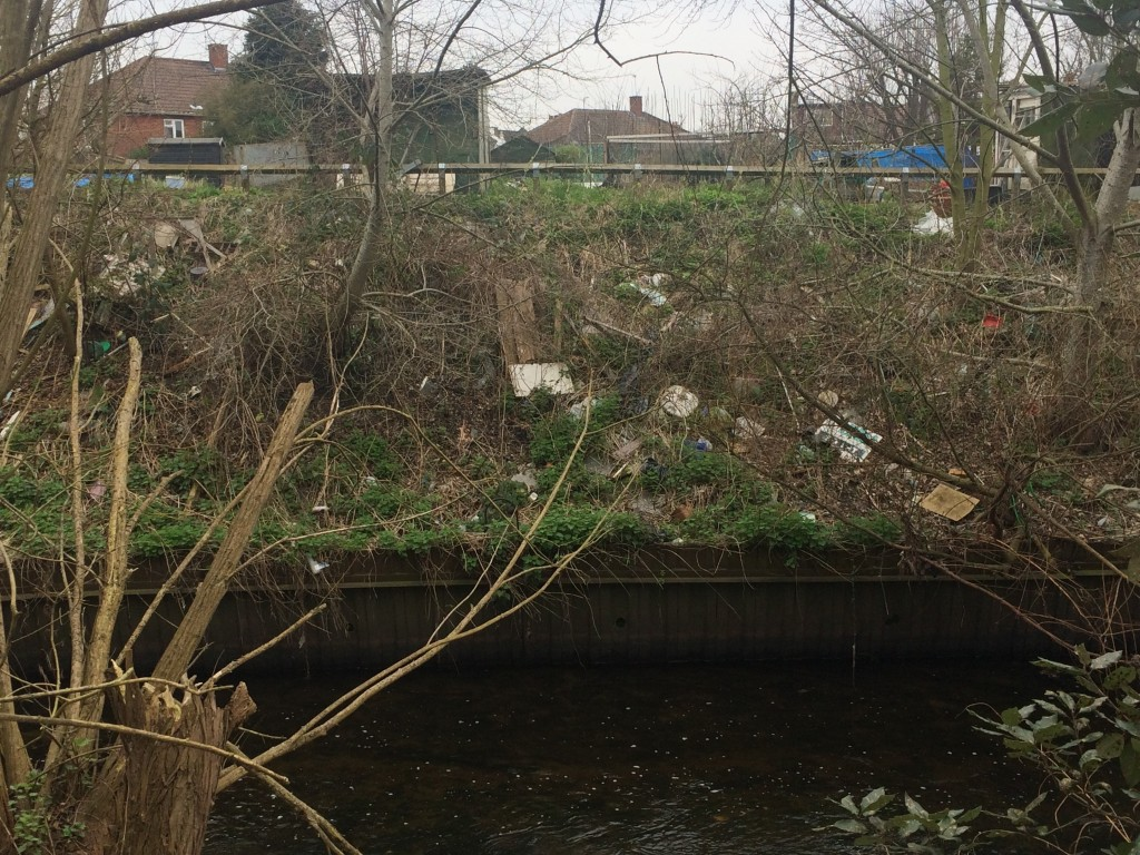 Fly tipping on the Wandle Bank